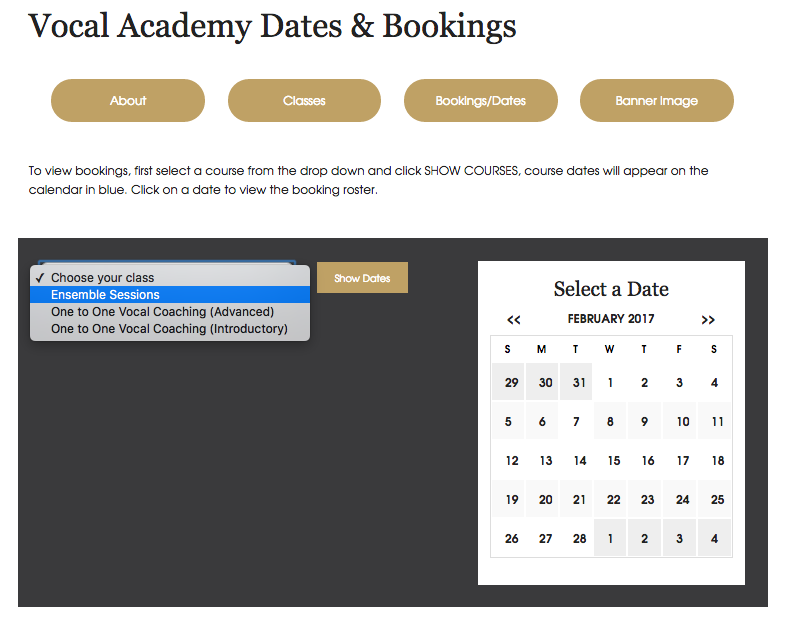 Bespoke Website Solutions - Bookings Calendar